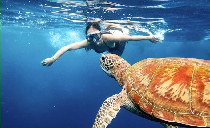 普吉选岛深度攻略,温暖海水,带你玩嗨普吉!我们一起遨游